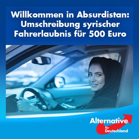 « Bienvenue en Absurdistan : émigrée syrienne - permis de conduire pour 500 euros »