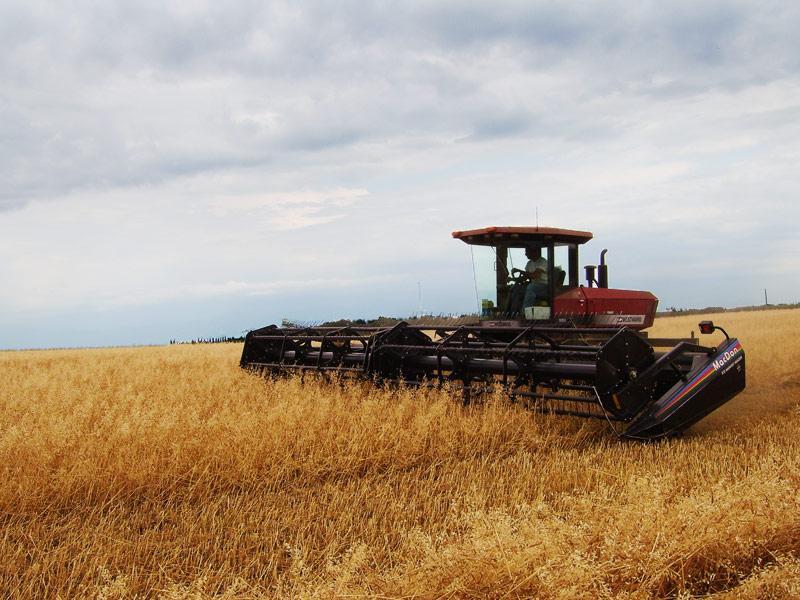 Agriculture européenne.