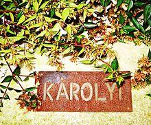 Plaque Fondation Karolyi