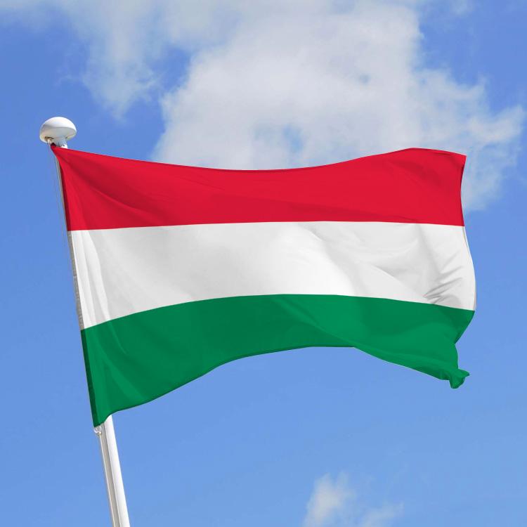 GP DE HONGRIE - Formula 1 Aramco Magyar Nagydij 2020  Drapeau-hongrois