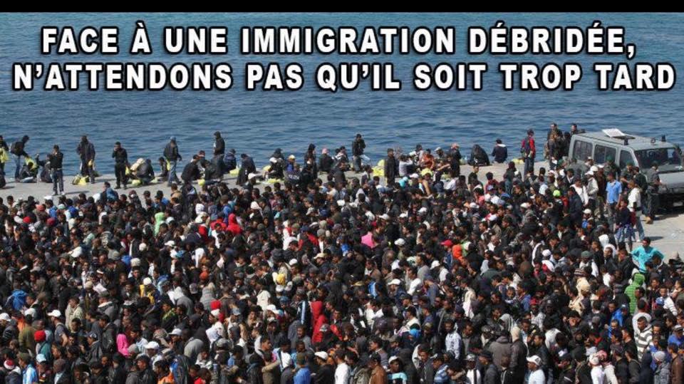 invasion migratoire
