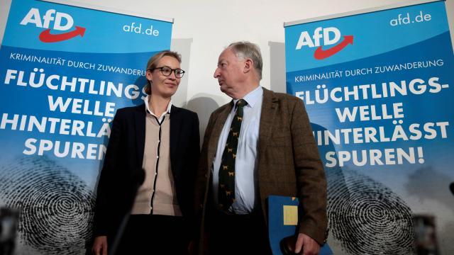Alice Weidel et Alexander Gauland, responsables de l'AfD.