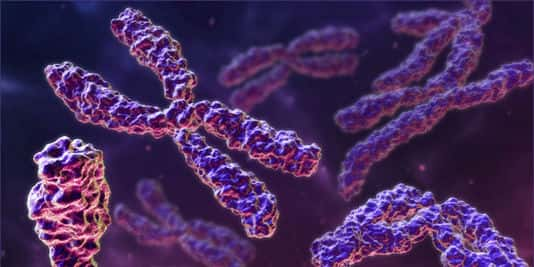 maladies genetiques