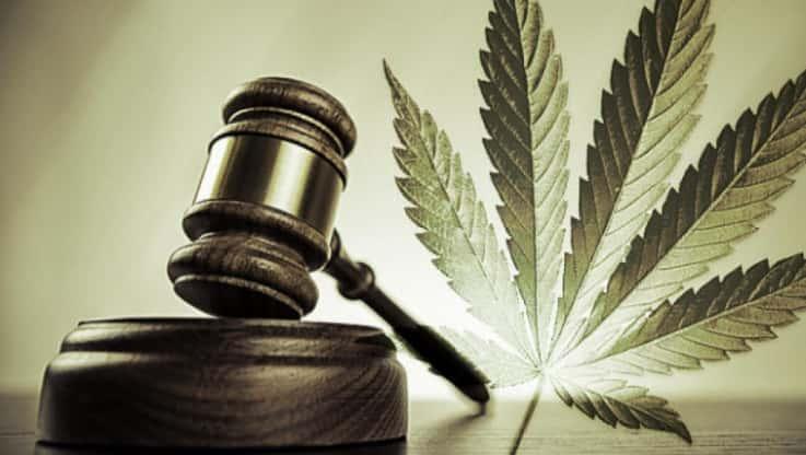 Légalisation du cannabis… pour commencer ?