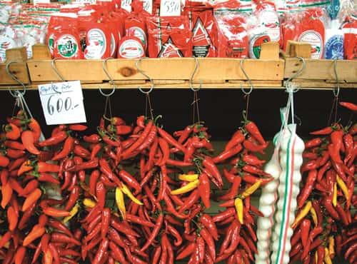 Le paprika ou « poivre turc ».