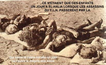 crimes FLN Algerie