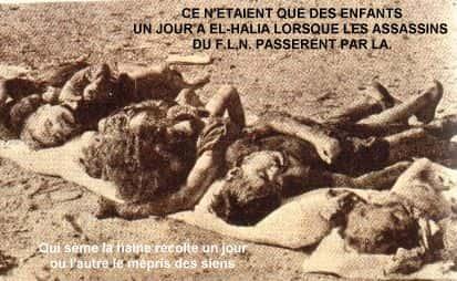 crimes FLN Algerie