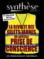 Un numéro hors-série de la revue Synthèse nationale sur la révolte des Gilets jaunes...