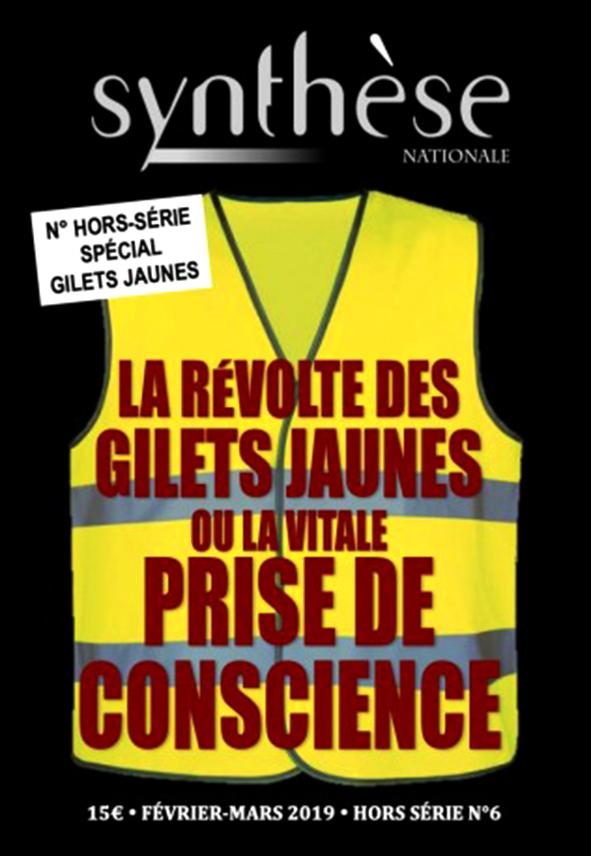 """""""Gilets jaunes ou la vitale prise de conscience"""", numéro Hors-série de la revue """"Synthèse Nationale""""."""
