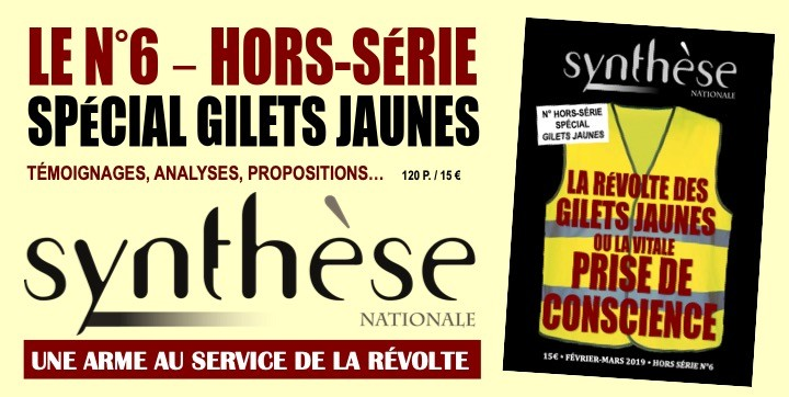 HS synthese gilets jaunes