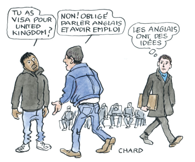 Dessin Chard