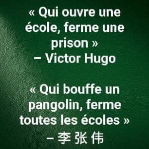 Confinement Victor Hugo ecole pangolin