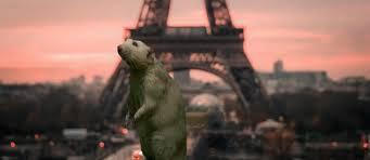 Paris Rats